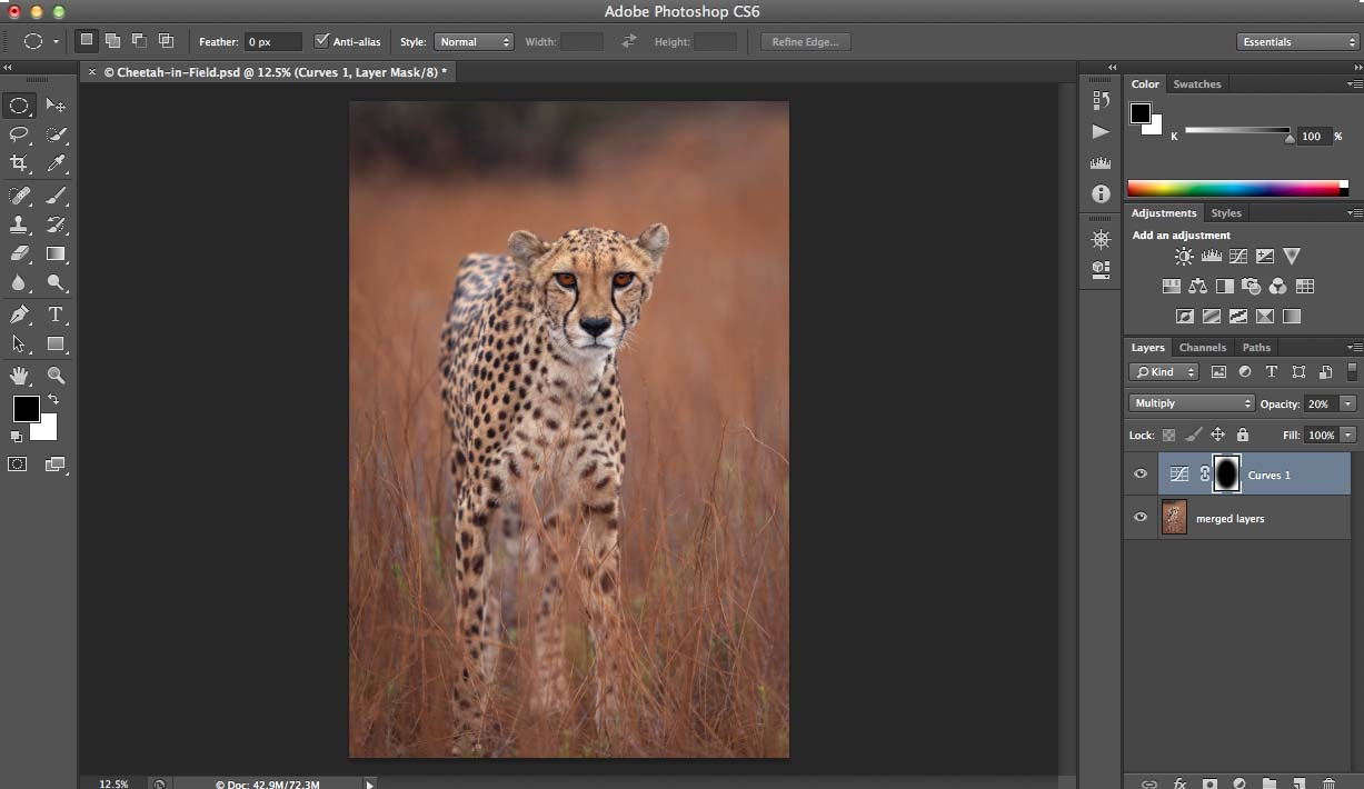Screen Shot Cheetah Complete