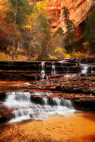 america,arch angel,arch angel falls,archangel,autumn,cascades,colors,fall,foliage,north america,southwest,united states,us,usa,utah,vertical,zion national park