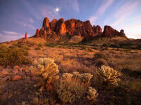 arizona, united states, landscape photography, twilight, superstition mountains, cholla cactus