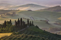 2016,May,Spring,belvedere,cyprus,europe,hills,horizontal,italy,landscape,morning,podere,rolling,san quirico,sunrise,tree,trees,tuscany,val d'orcia,val dorcia,wheat fields