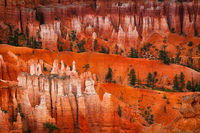 america,bryce canyon,horizontal,morning,national park,north america,southwest,sunrise,united states,us,usa,utah