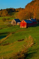 america,autumn,barn,building,colors,east,eastern,fall,farm,foliage,jenne farm,new england,north america,reading,united states,us,usa,vermont,vertical