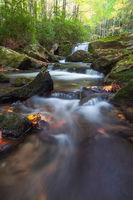 creek,east,great smoky mountains national park,little river,middle prong trail,north america,tennessee,united states,water body