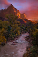 america,brilliant,north america,southwest,sunset,united states,us,usa,utah,vertical,watchman,zion national park