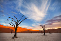 End of Day at Deadvlei
