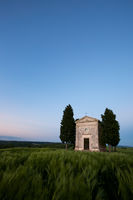 2016,May,Spring,blue hour,cyprus,europe,evening,hills,italy,landscape,portrait,rolling,tree,trees,tuscany,twilight,val d'orcia,val dorcia,vertical,vitaleta church,wheat fields