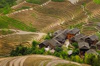 2,asia,china,gold,green,hill,horizontal,longji,longji rice terraces,longji viewpoint 2,longsheng,mountain,planting season,rice terrace,terrace,two,vie