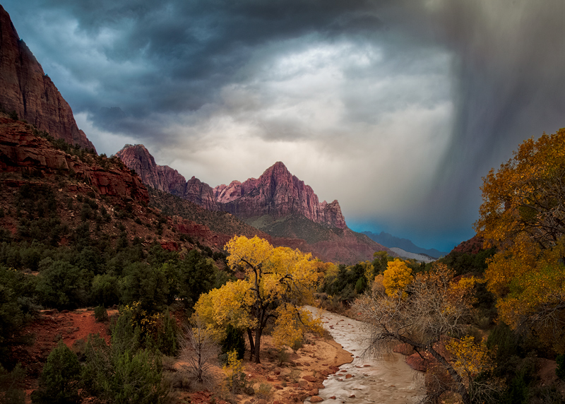 cloudy,cottonwood,fall,landscape,morning,mountain,north america,peak,river,southwest,sunrise,tree,united states,utah,watchman,water body,zion national park