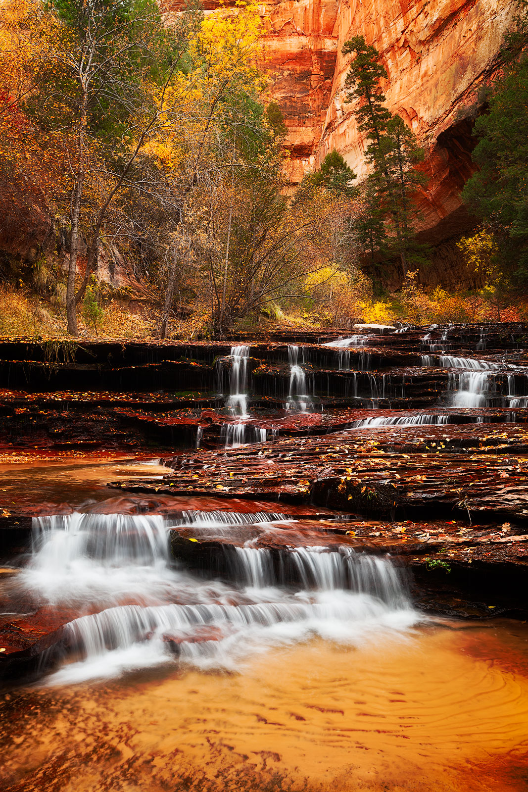 america,arch angel,arch angel falls,archangel,autumn,cascades,colors,fall,foliage,north america,southwest,united states,us,usa,utah,vertical,zion national park, photo