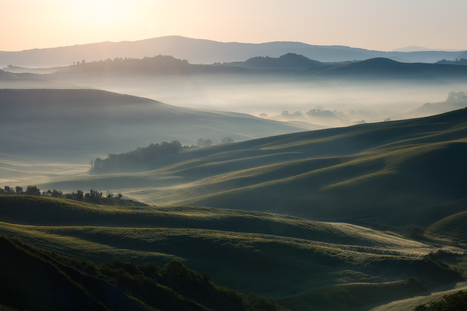 Horizontal view of early morning sunlight hitting a foggy valley.