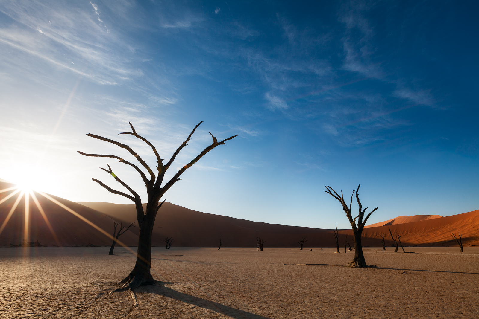 Morning burst of sun over the top of the dunes at Deadvlei