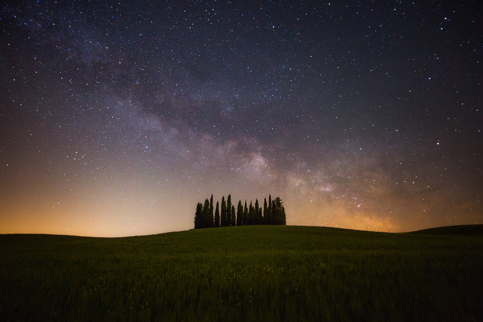 2016,May,Spring,cyprus,europe,hills,horizontal,italy,landscape,milky way,night,rolling,san quirico d'orcia,star,star trail,stars,trail,tree,trees,tuscany,wheat fields, photo