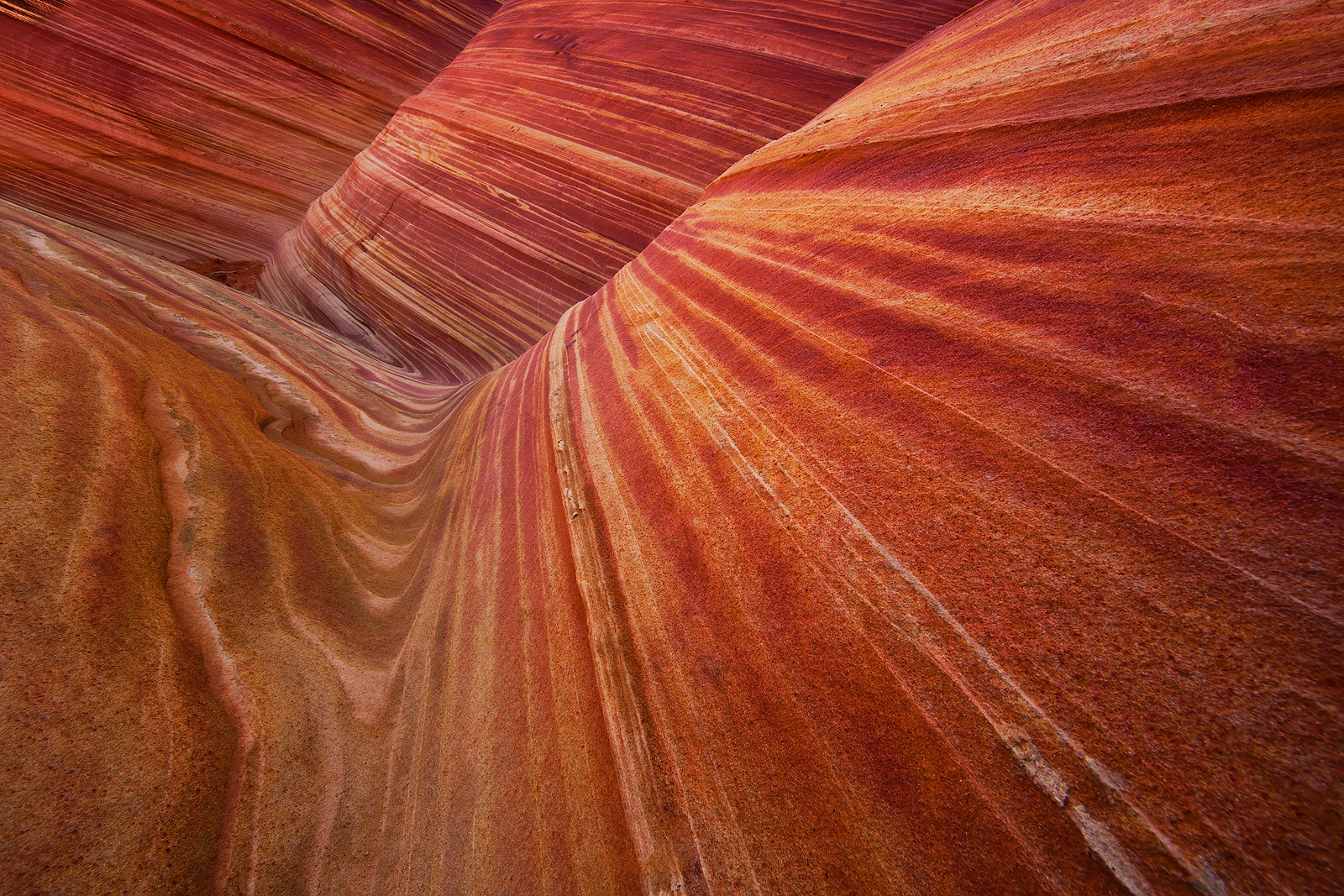 america,arizona,coyote buttes,horizontal,monument,national monument,navajo,navajo nation,navajo territory,north america,paria canyon,rock,sandstone,southwest,the wave,united states,us,usa,utah,vermill, photo