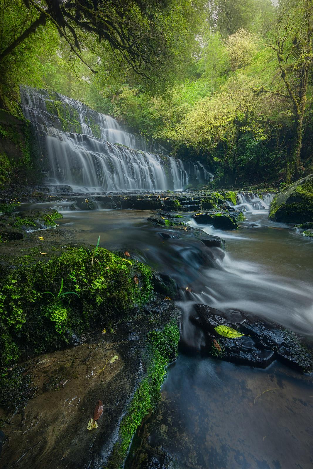 New Zealand, beautiful, creek, landscape, pond, pool, purakaunui falls, south island, stream, sun, the caitlins, water body, waterfall, photo