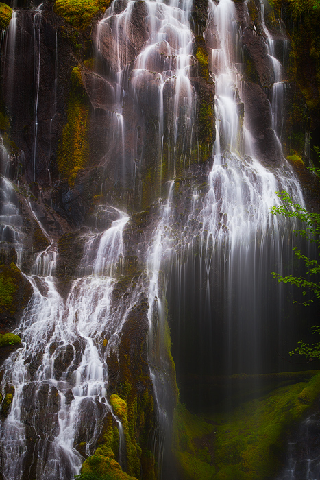 beautiful,columbia river gorge,north america,northwest,oregon,pacific northwest,panther creek,panther creek falls,united states,vertical,water body,waterfall, photo