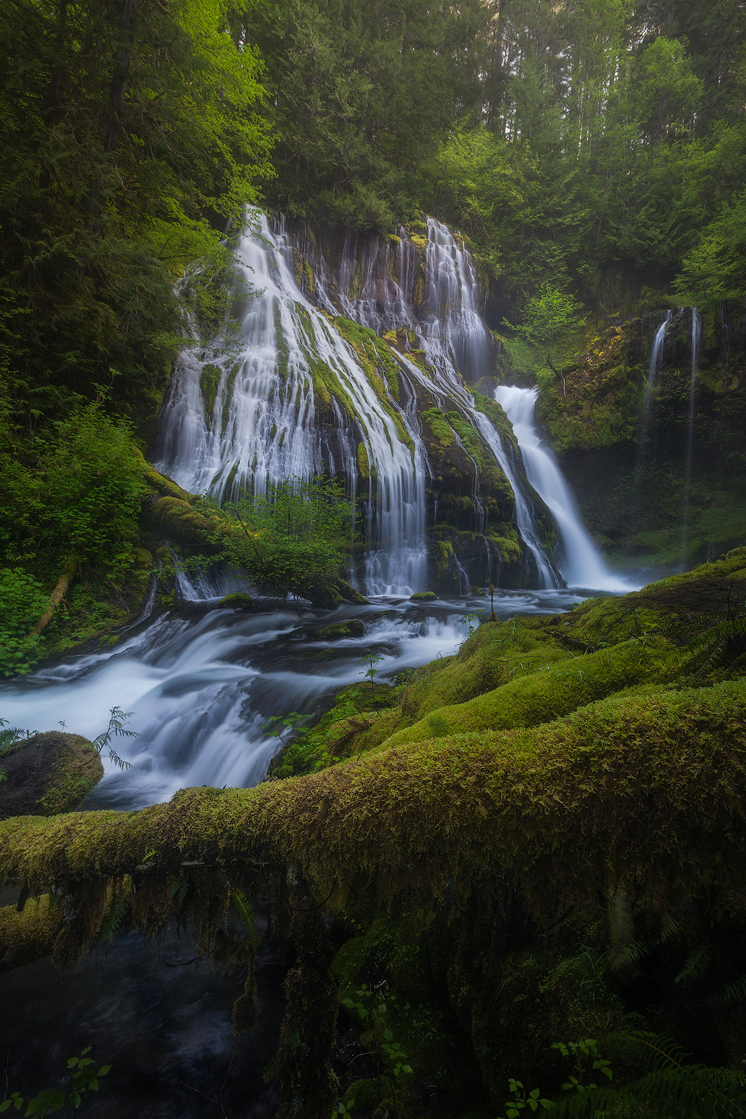 beautiful, columbia river gorge, north america, northwest, oregon, pacific northwest, panther creek, panther creek falls, united states, vertical, water body, waterfall, photo