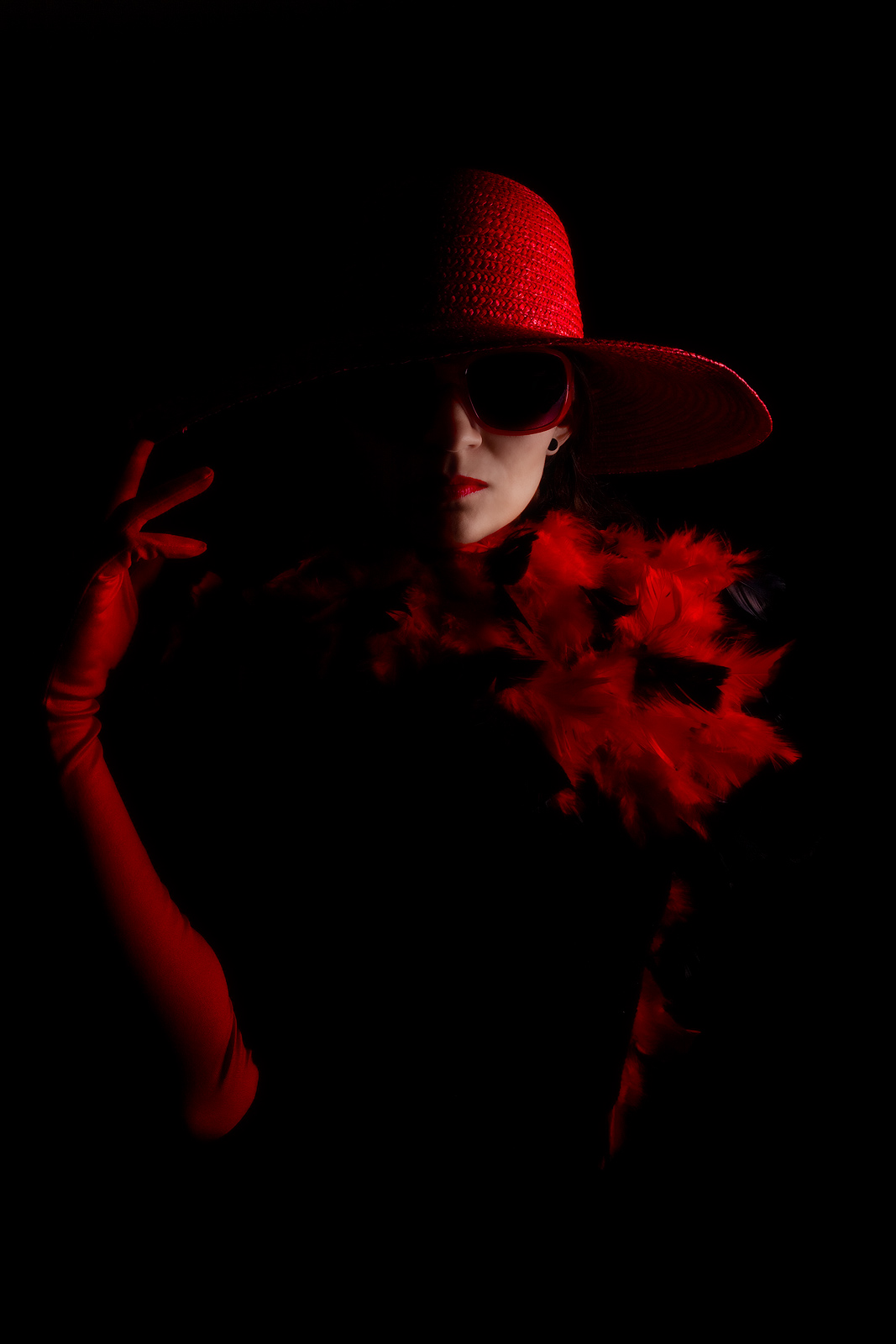 fashion,fashionable,female,glasses,hat,lady,mysterious,portrait,side-lighting,side-lit,studio,stylish,sunglasses,temptation,vertical,woman, photo
