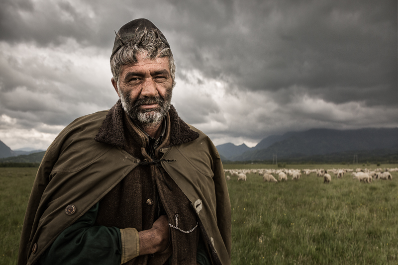 2016,environmental portait,europe,horizontal,landscape,male,man,people,portrait,romania,romanian,rural,sheep,shepherd,transilvania,transylvania, photo
