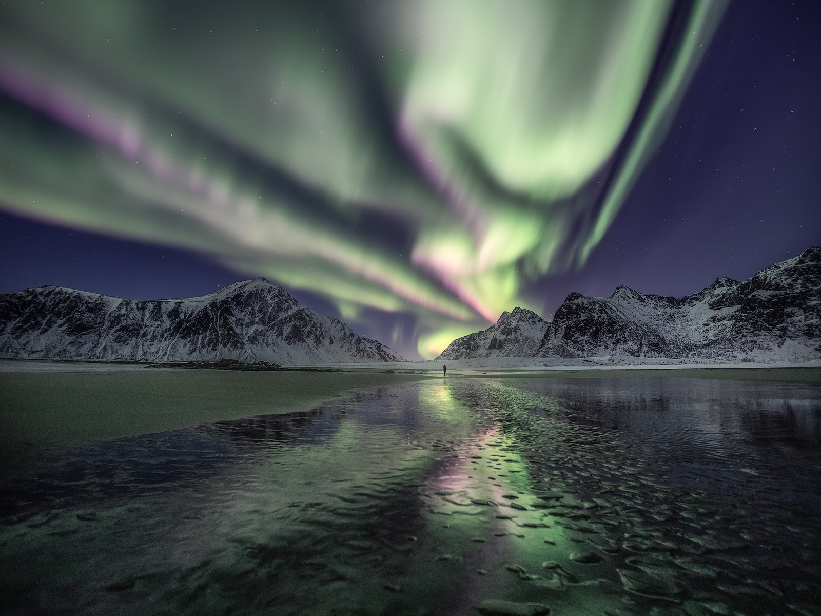 Amazing Aurora Borealis display on a beach in Lofoten, Norway.