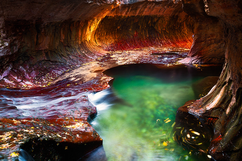 america,canyon,horizontal,left fork,left fork at north creek,left fork of north creek,north america,southwest,subway,the subway,united states,us,usa,utah,zion national park, photo