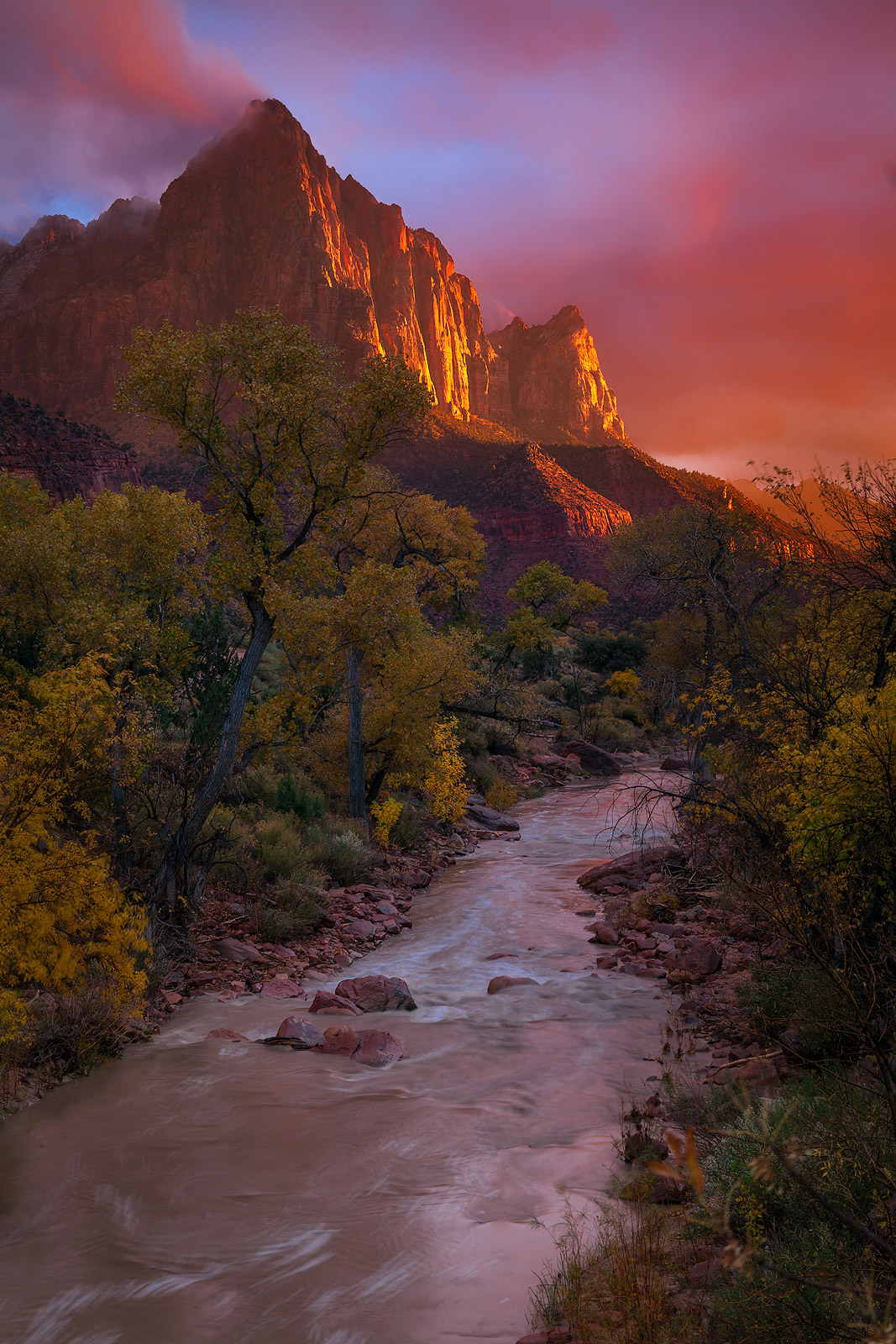 america,brilliant,north america,southwest,sunset,united states,us,usa,utah,vertical,watchman,zion national park, photo