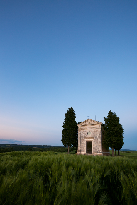 2016,May,Spring,blue hour,cyprus,europe,evening,hills,italy,landscape,portrait,rolling,tree,trees,tuscany,twilight,val d'orcia,val dorcia,vertical,vitaleta church,wheat fields, photo