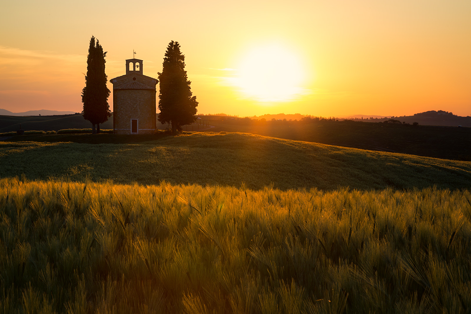 2016,May,Spring,cyprus,europe,evening,fog,foggy,gold,golden,hills,horizontal,italy,landscape,mist,misty,rolling,sunset,tree,trees,tuscany,val d'orcia,val dorcia,vitaleta church,wheat fields, photo