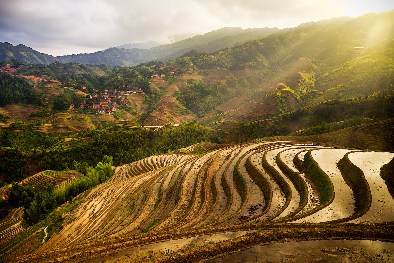 3,asia,china,gold,green,hill,horizontal,longji,longji rice terraces,longji viewpoint 3,longsheng,mountain,planting season,rice terrace,terrace,three,v, photo