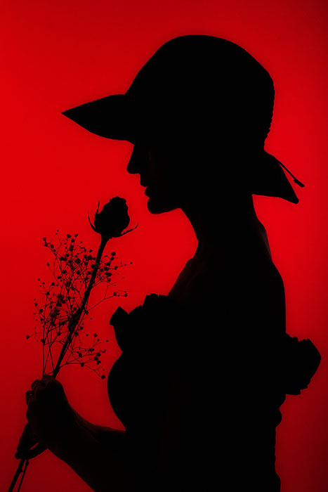 beautiful,female,hat,holding,lady,love,red,rose,silhouette,studio,vertical,woman, photo