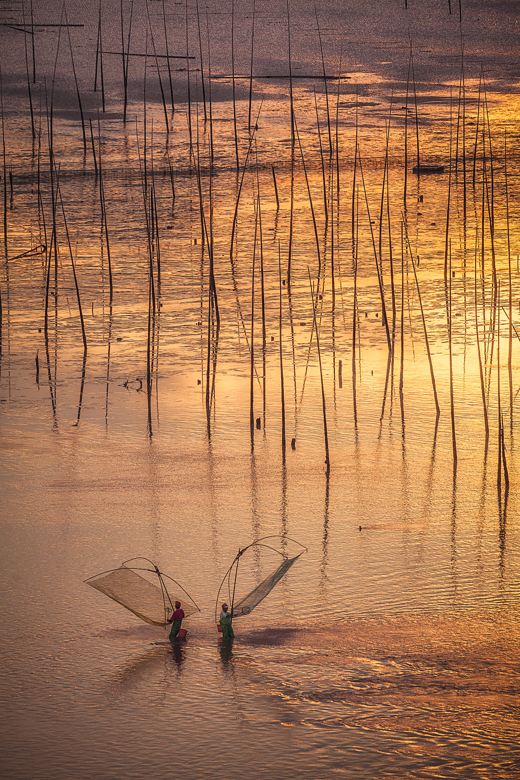 Bei Qi,BeiQi,Xia Pu,XiaPu,asia,beach,boat,china,fisherman,fishing boat,hill,lake,landscape,morning,mountain,mud flat,mudflat,net,nets,sticks,sunrise,water, photo
