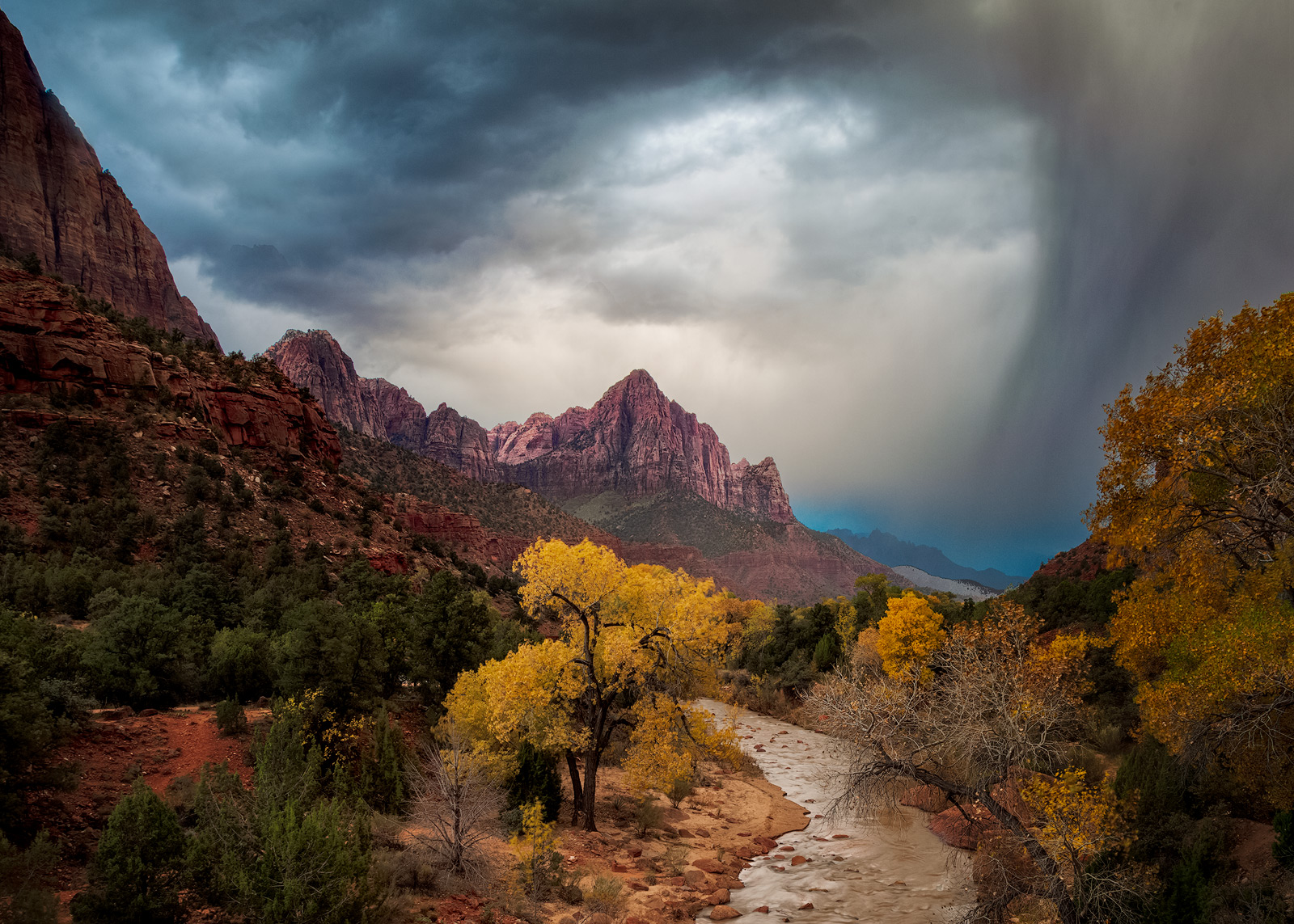 cloudy,cottonwood,fall,landscape,morning,mountain,north america,peak,river,southwest,sunrise,tree,united states,utah,watchman,water body,zion national park, photo