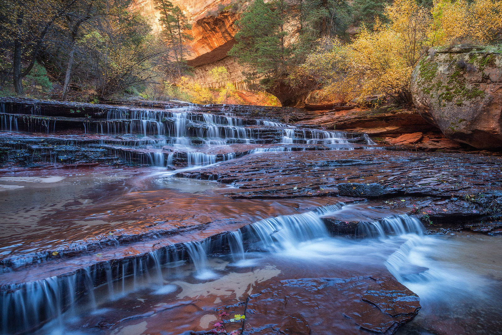 fall, landscape, leaf, leaves, maple, north america, river, southwest, stream, the subway, trees, united states, utah, water body, waterfall, zion national park, photo
